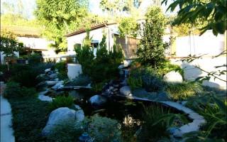 Custom-Residential-Pond